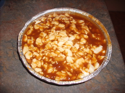Poutine extra sauce et fromage - Restaurant Atesh (Laval) - MaPoutine.ca
