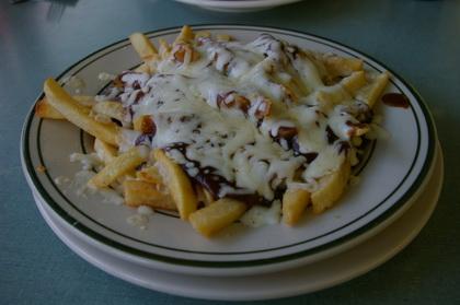 Cheesey Gravy Fries - Plain Jane